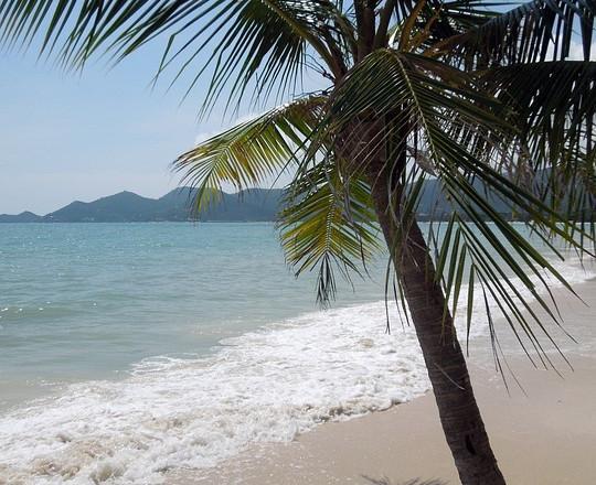 Reisen nach Koh Samui